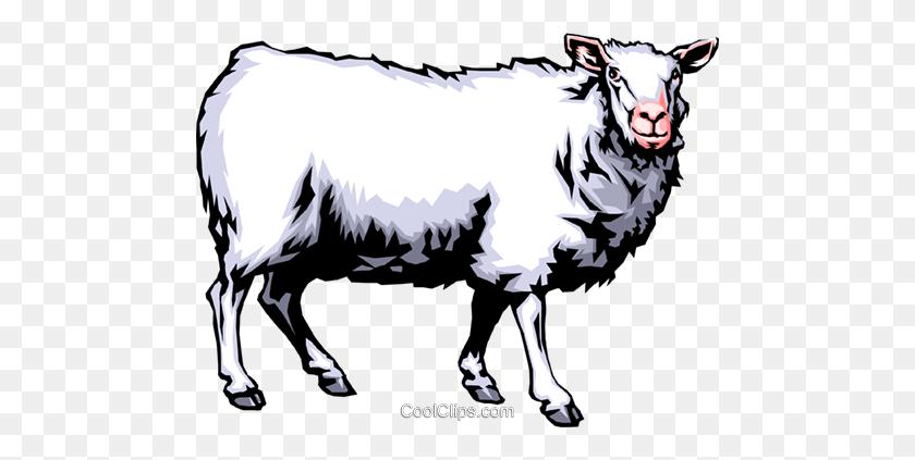 Sheep Royalty Free Vector Clip Art Illustration - Sheep Clipart