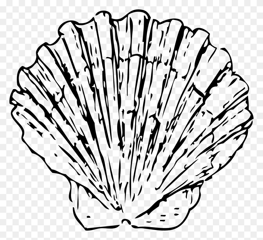 Shell Clip Art Free - Shell Clipart