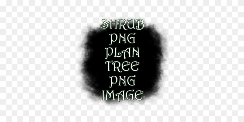 Shrub Png Plan Tree Png Image - Shrub PNG