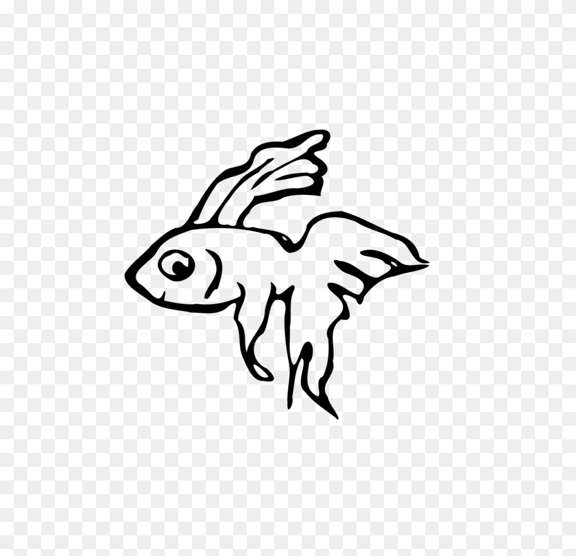 Siamese Fighting Fish Drawing Computer Icons Betta Channoides Free - Betta Fish PNG