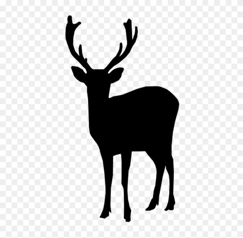 Silhouette - Deer Silhouette PNG