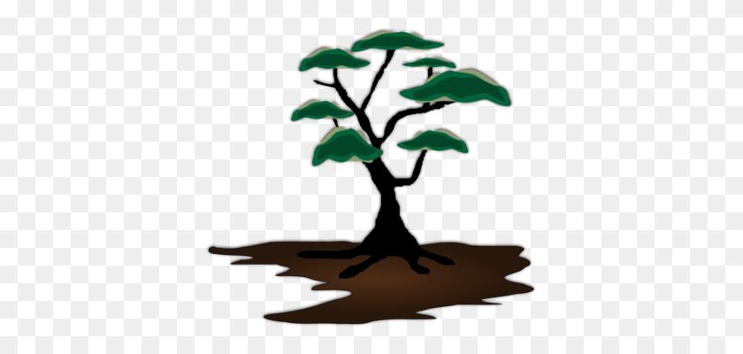 Silhouette Tree Drawing Oak Root - Oak Tree Silhouette PNG