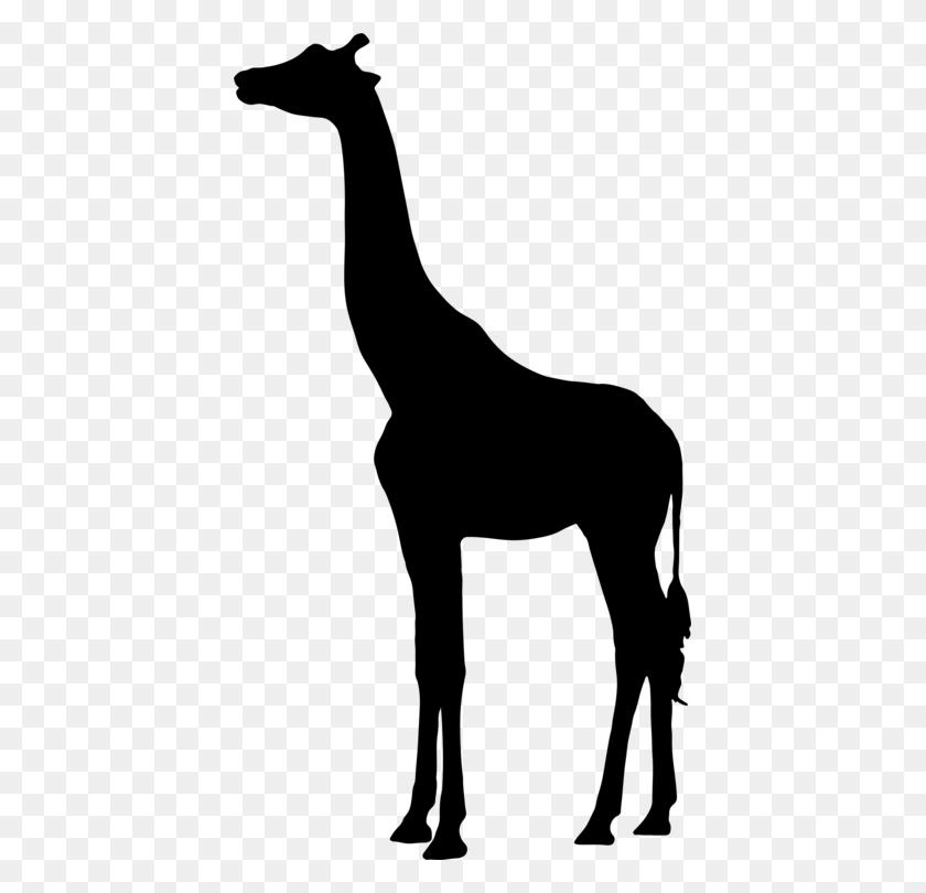 Silhouette West African Giraffe Northern Giraffe Mammal Free - Okapi Clipart