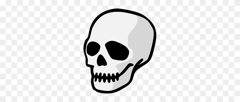255x300 Skull Free Clipart - Longhorn Skull Clipart