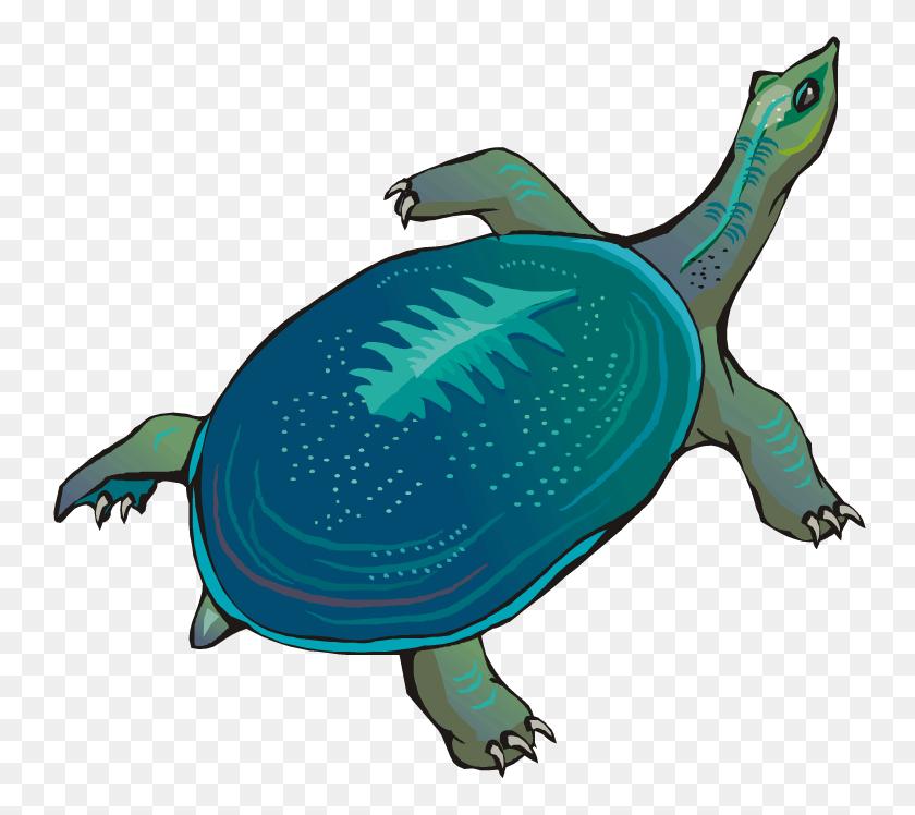 Slow racing turtle clipart - Clipartix