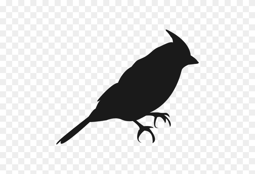 Small Bird Silhouette - Birds Silhouette PNG