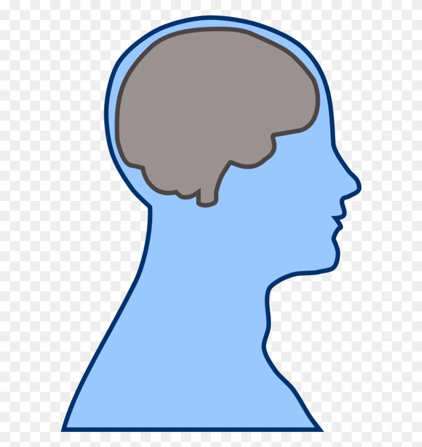 Smart Clipart Brain, Smart Brain Transparent Free For Download - Brain Clipart Transparent