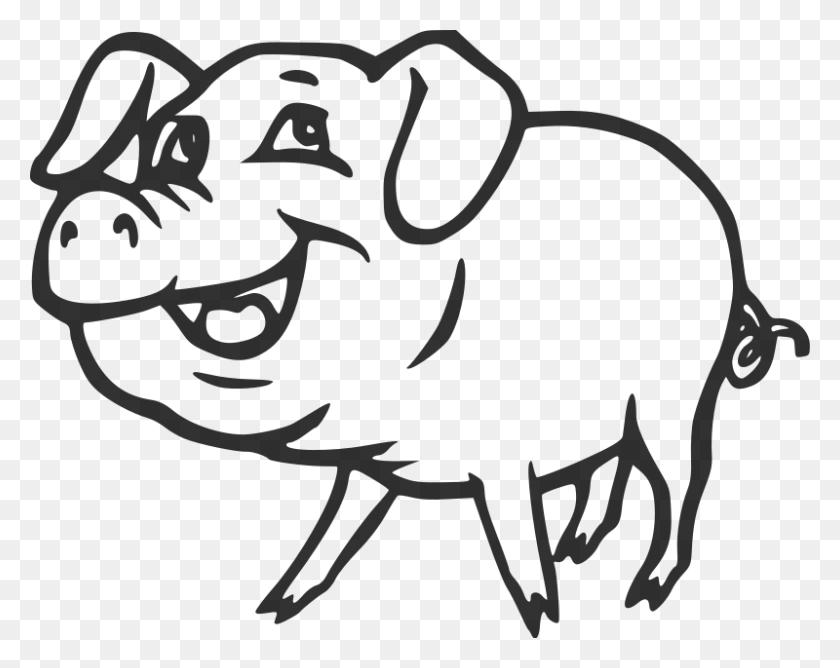 Smiling Pig Clip Art Smiling - Show Pig Clip Art