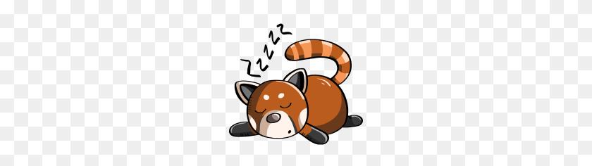 Snoring Red Panda Panda Bear Is Sleeping - Red Panda PNG