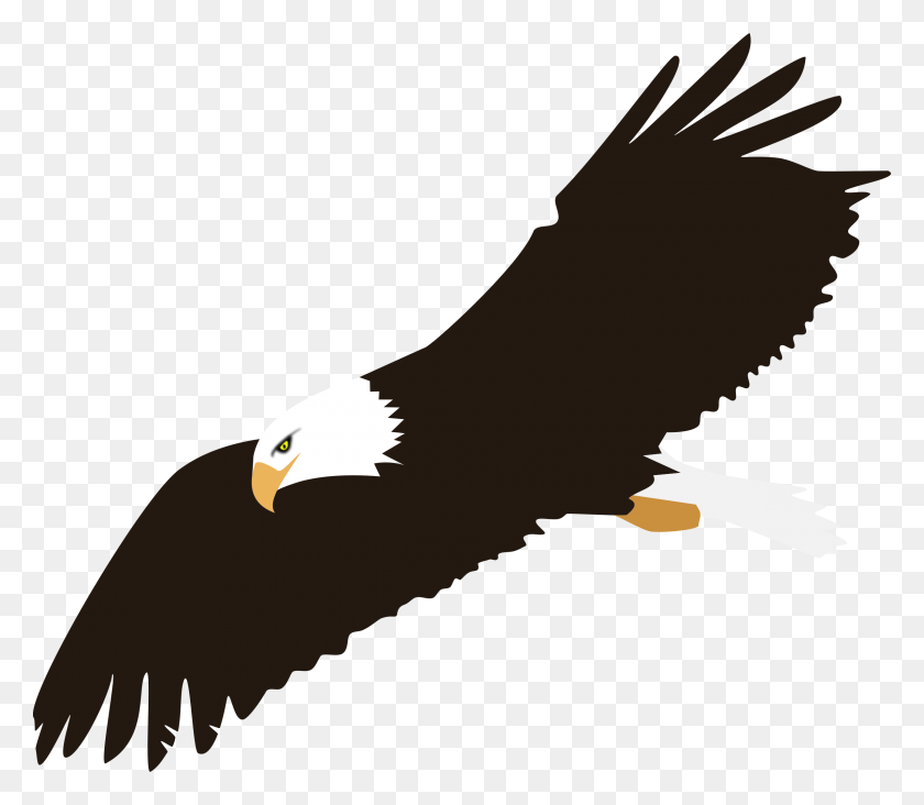 2400x2068 Soaring Bald Eagle Vector Clipart Image - Free Feather Clip Art