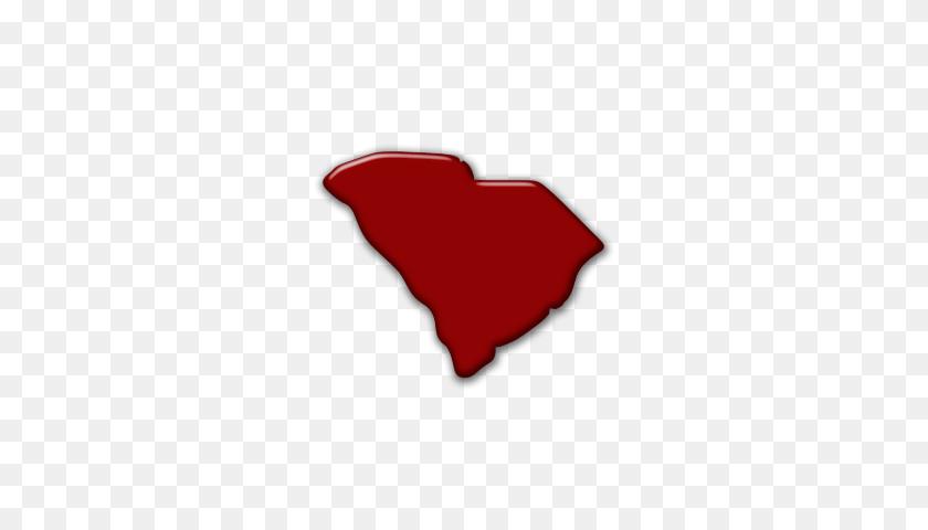 South Carolina Voter Info - South Carolina PNG