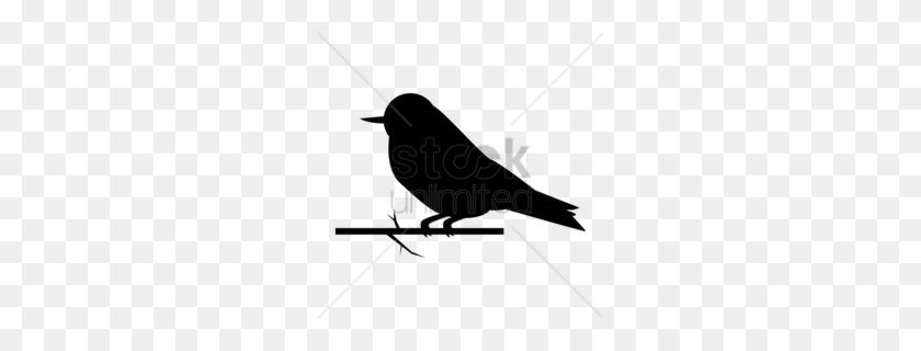 Sparrow Silhouette Clipart - Mockingbird Clipart