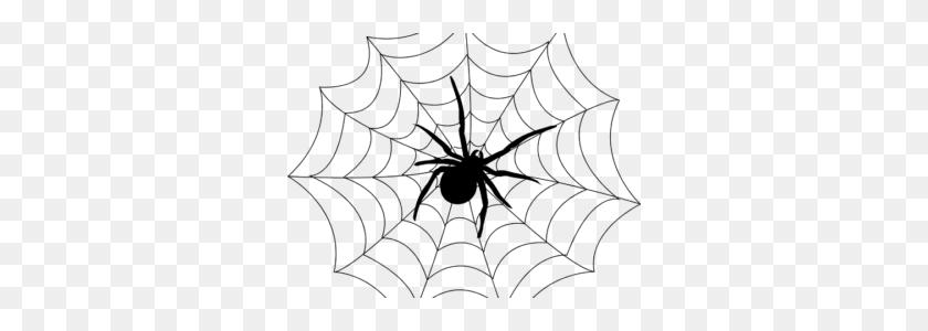 Spider Black And White Black And White Spider Clipart - Spider Clipart