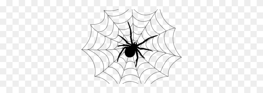 320x240 Spider Black And White Spider Webs Web Free And Clipart Images - Halloween Spider Web Clipart
