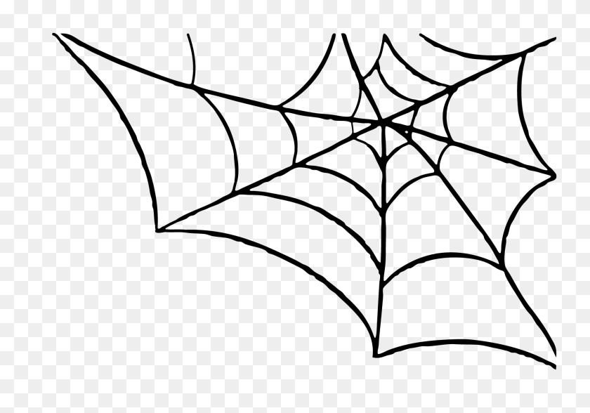 Spider Web Border Spider Web Clip Art - Animal Border Clipart