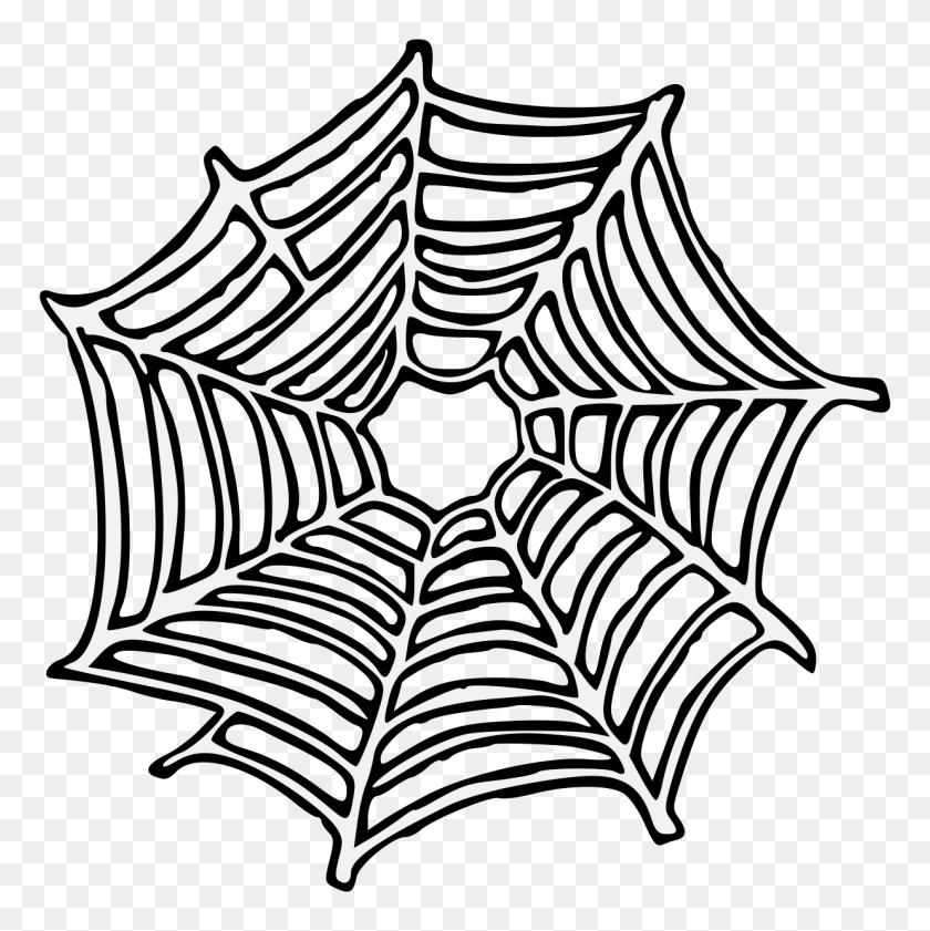 1237x1239 Spiderweb - Spider Web PNG