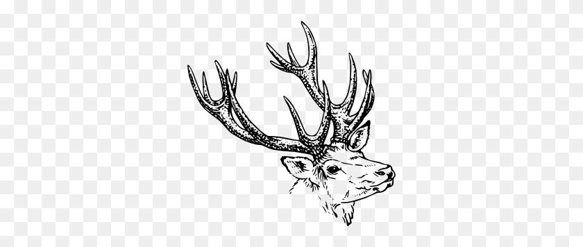 Stag Head Clip Art - Elk Clipart