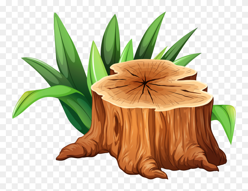 Stump Tree Clipart, Explore Pictures - Trees Clipart PNG