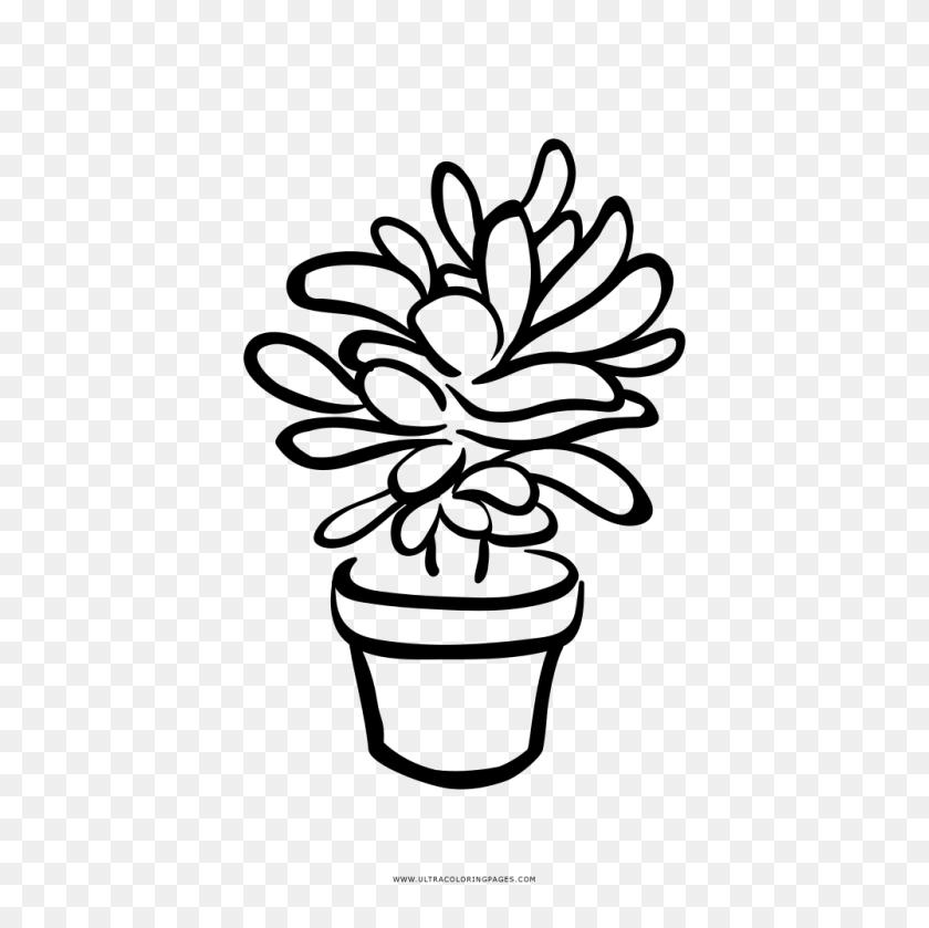 Succulent Coloring Page - Succulents Clipart