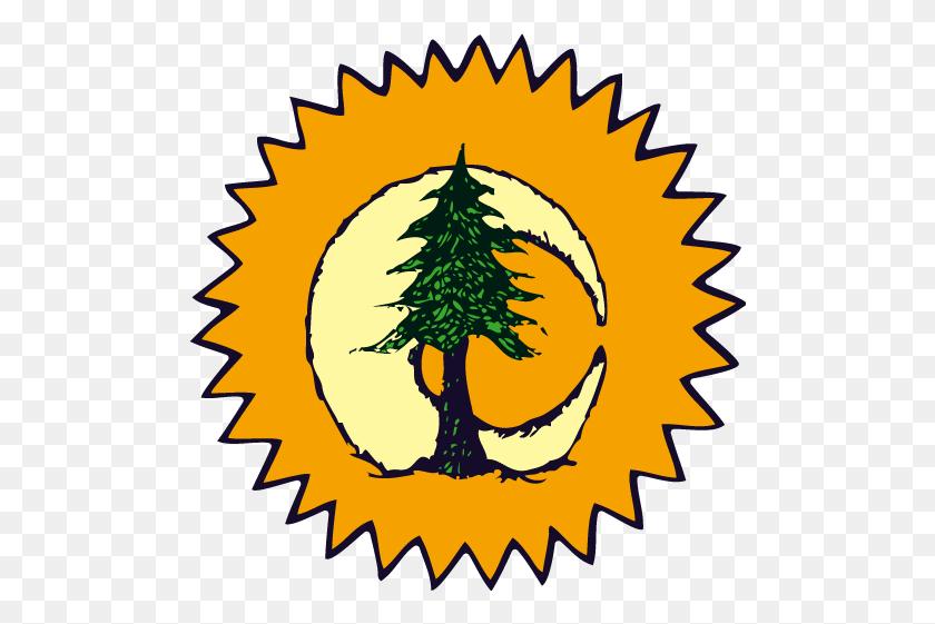 Sun Moon Pine Tree - Sun Moon Stars Clipart