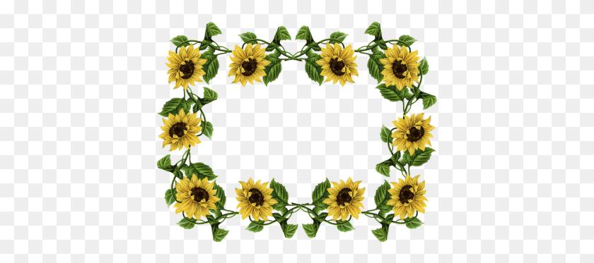 Sunflower Border Clip Art Fall Sunflower Clip Art Border - Plant Border Clipart