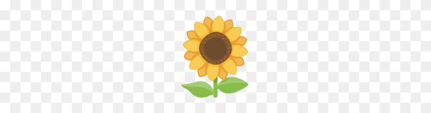 Sunflower Sunfloweremoji Sunflower Emoji Flower Emoji
