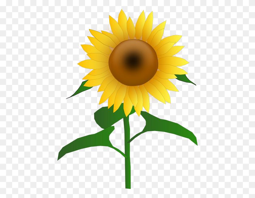 Sunflower Jh Clip Art Free Vector - Thank You Clipart