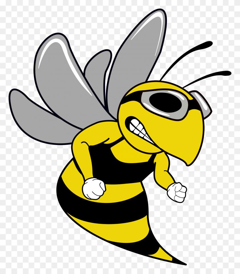 Swim Team Hornet Mascot - Swim PNG