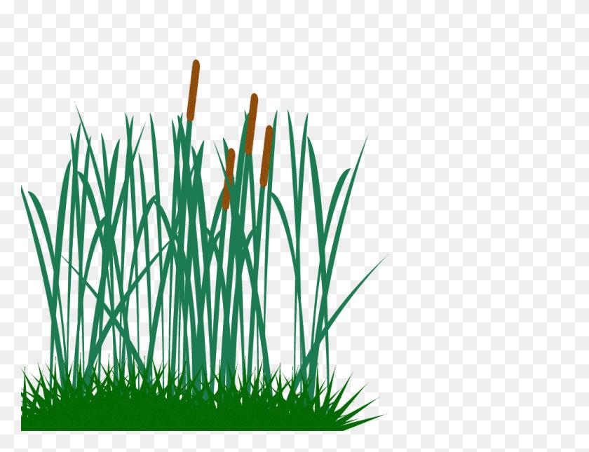 Tall Grass Clip Art Png - Tall Grass Clipart