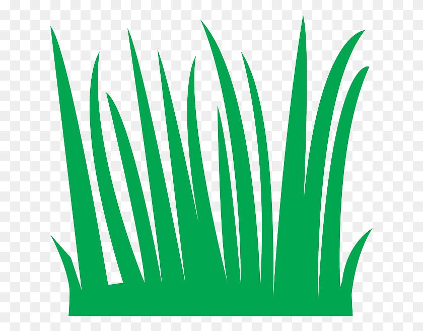 Tall Grass Clipart - Tall Clipart