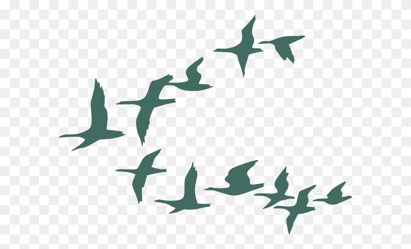 Teal Flock Of Geese Clip Art - Flock Of Birds Clipart