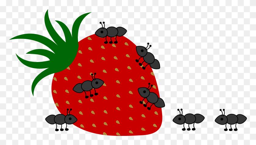 Termite Cliparts Animated - Termite Clipart