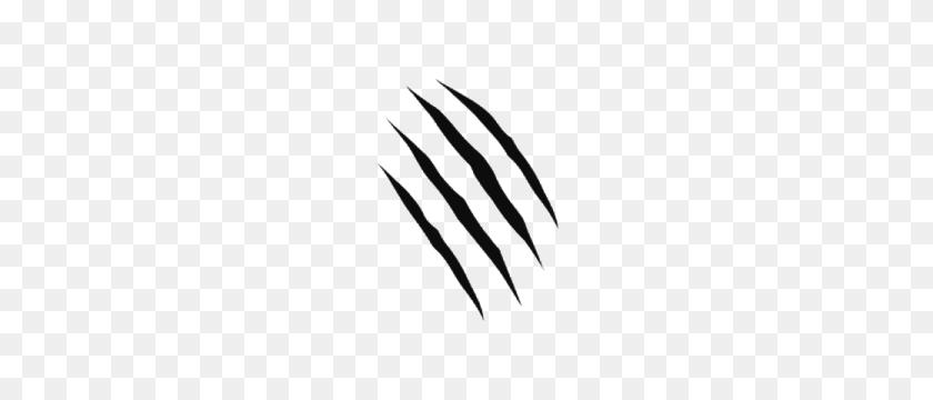 Tiger Claw Marks Claw Marks Png Wikimedia Commons Claw Marks - Tiger Claw Clipart