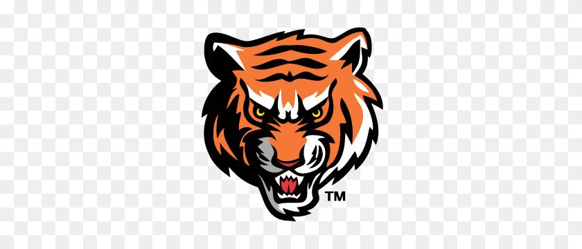 300x300 Tigers Logos Logos, Sports - Saber Tooth Tiger Clipart