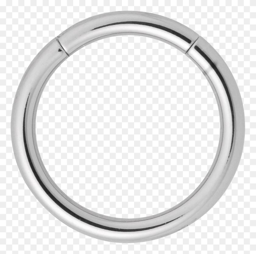Titanium Segment Ring Septum Piercing Png Stunning Free
