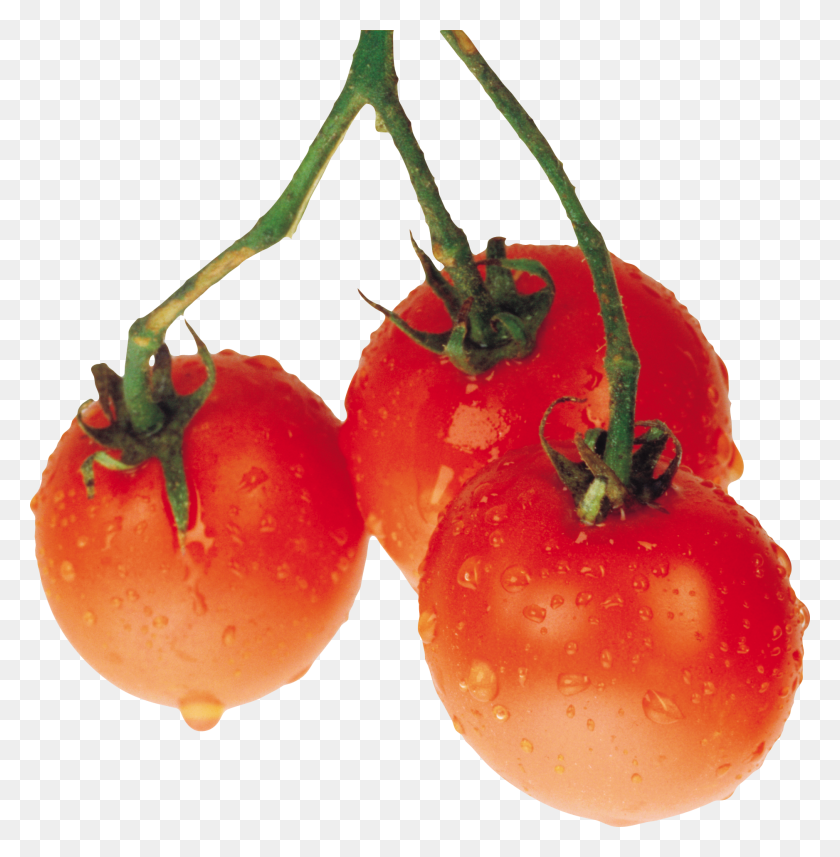 Tomato Png Images Free Download - Tomatoes PNG