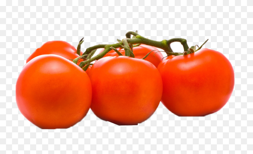 Tomato Png Png Play - Tomatoes PNG