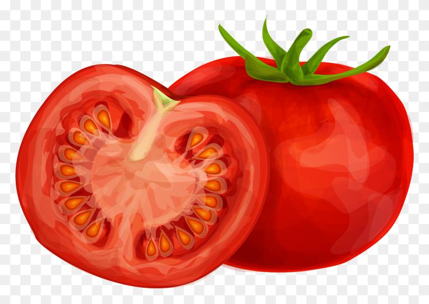 Food, fruit, half, slice, tomato, tomatoe, vegetable icon   Slice Of Tomato Clipart