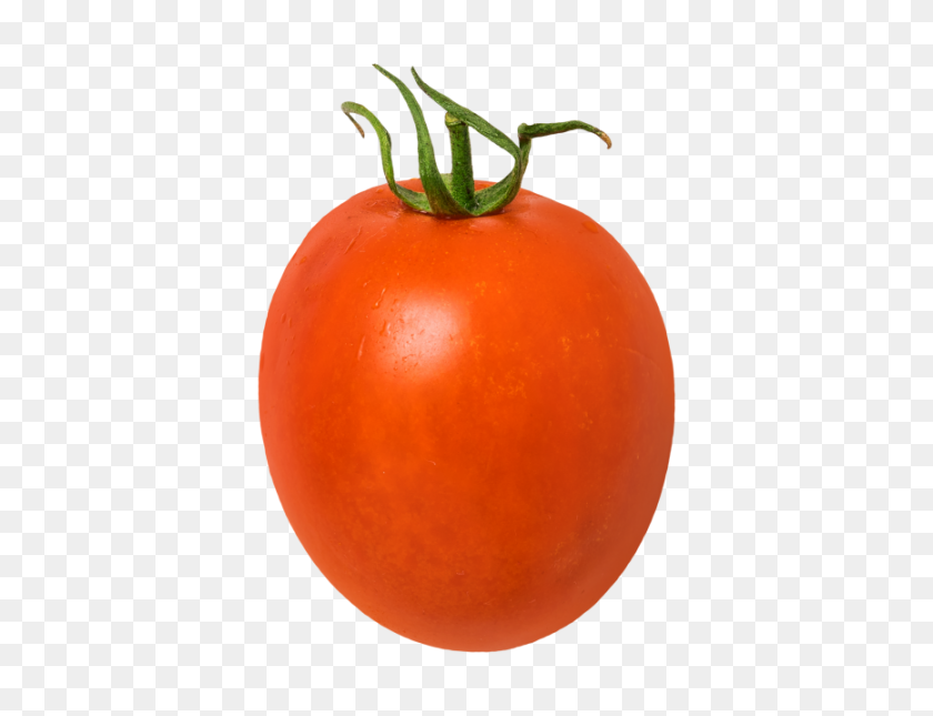 Tomato Transparent Png Image - Tomatoes PNG