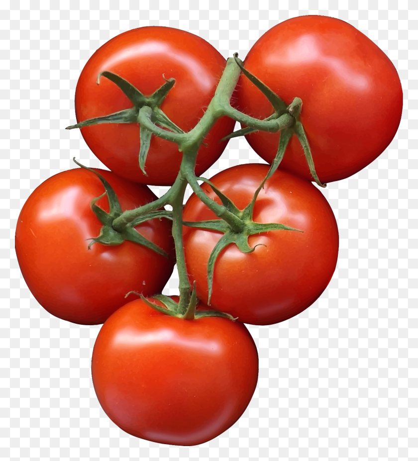 Tomatoes Icons Png - Tomatoes PNG