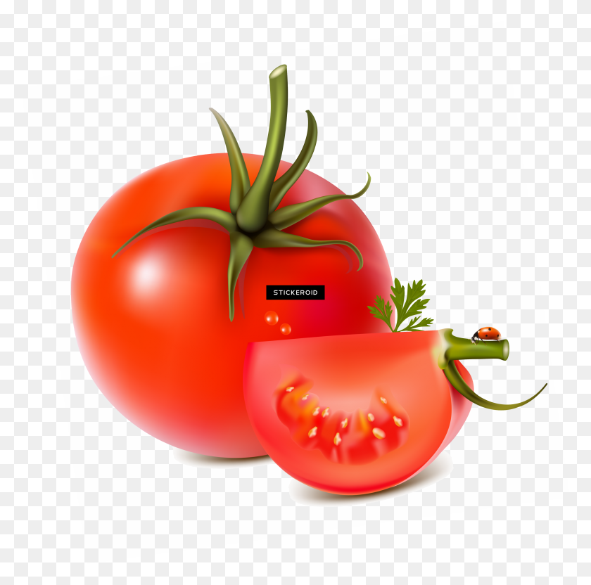Tomatoes Png - Tomatoes PNG