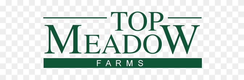 Top Meadow Farms - Meadow PNG