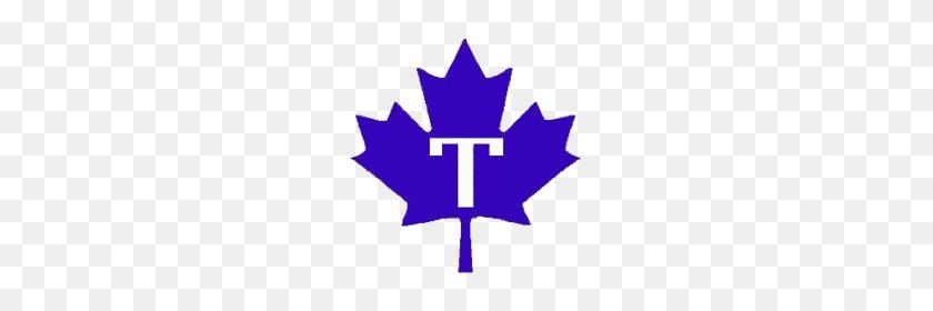 Toronto Maple Leafs - Baseball PNG