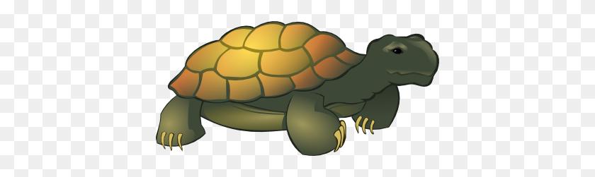 Tortoise Clip Art Look At Tortoise Clip Art Clip Art Images - Sea Otter Clip Art
