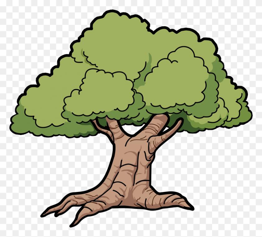 Tree Clip Art - Trees Clipart PNG