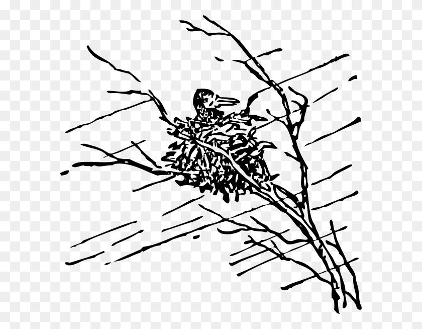 Tree Clip Art - Hurricane Clipart Black And White