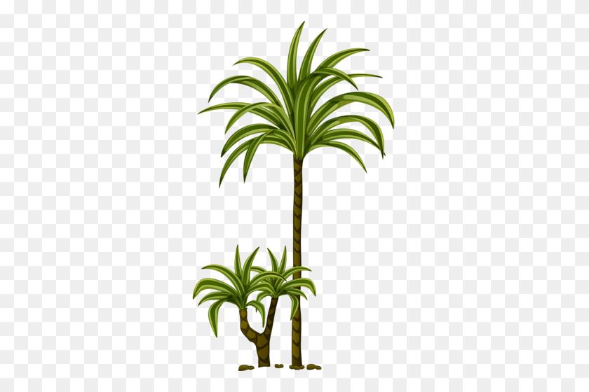 Tree Leaves, Tree Of Life - Palm Tree Leaves PNG