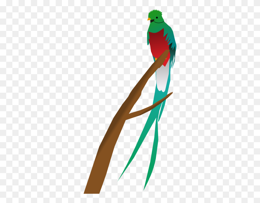 Tropical Bird Clip Art - Tropical Bird Clipart