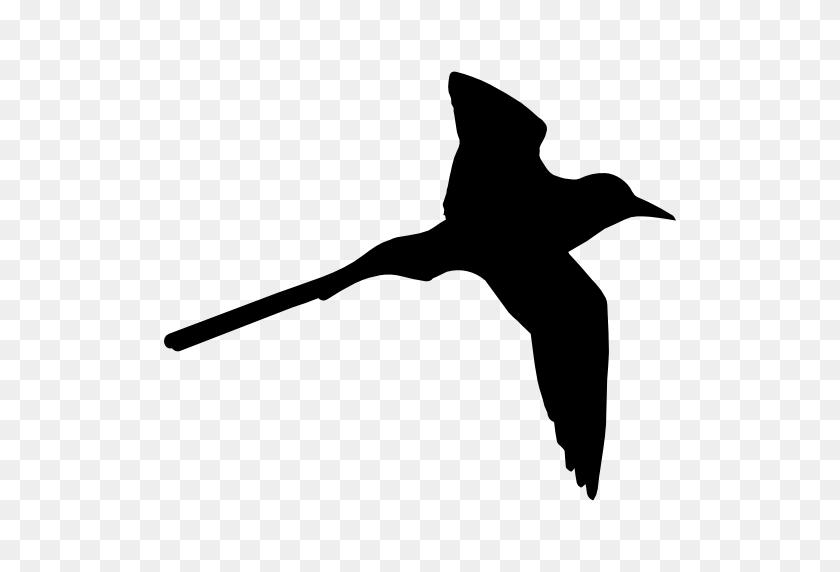 Tropical Bird Shape Of Long Tail - Birds Silhouette PNG