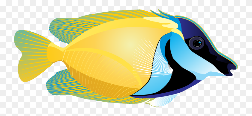 Tropical Fish Clip Art Look At Tropical Fish Clip Art Clip Art - Tropical Fish Clipart